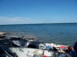 Cormorant Fishing 2008 (46)