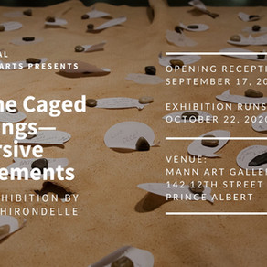 """Drive-In Reception for """"Why the Caged Bird Sings - Immersive Engagements"""""""