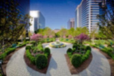 Adams Capital Atlanta Office