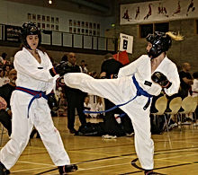West Midland Martial Arts