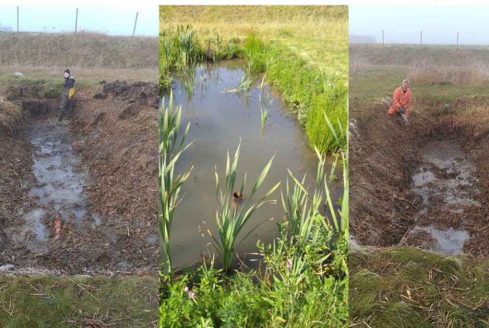 The work in the wetlands has started. Here you see Stefan Weisner and Josefin Nilsson restoring the overgrown wetlands to a standardized volume. Pictures taken on the 27th of November 2020 (c) Antonia Liess.