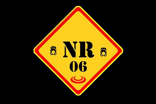 Curso de NR 6 - Equipamento de Proteção Individual