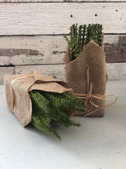 Herb in burlap