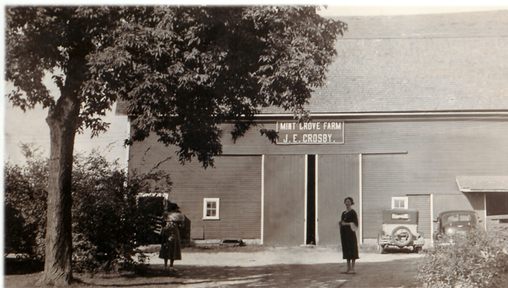 Original Mint Grove Barn