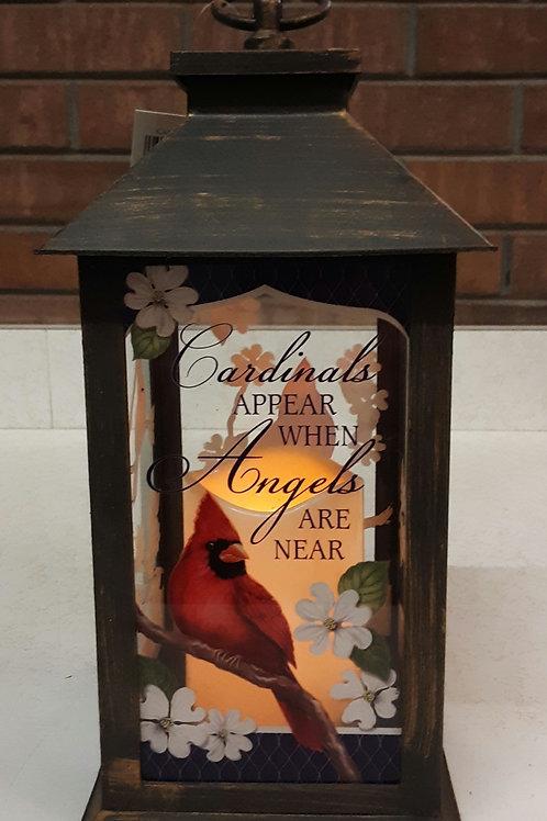 Lantern - Cardinal