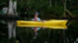 kayaking, manatees, florida, springs,