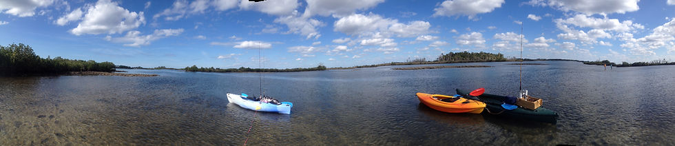 tours, kayak, nature, wildlife, manatees, kayaking