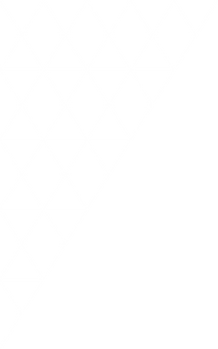 SITECH_Triangle_White.png