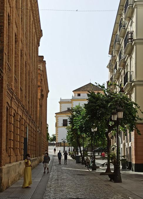 Calle Plocia