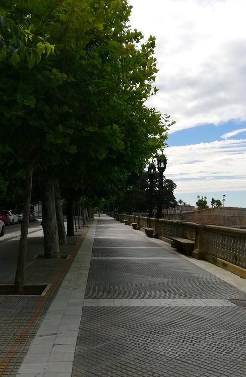 Alameda Apodaca