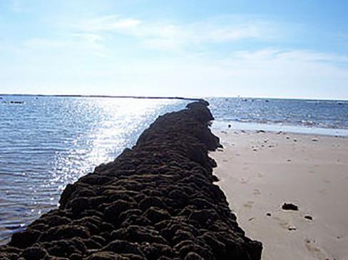 Corral de pesca en playa Candor