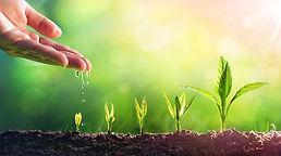 growth-stopper-blog-CentreNDL-Leadership