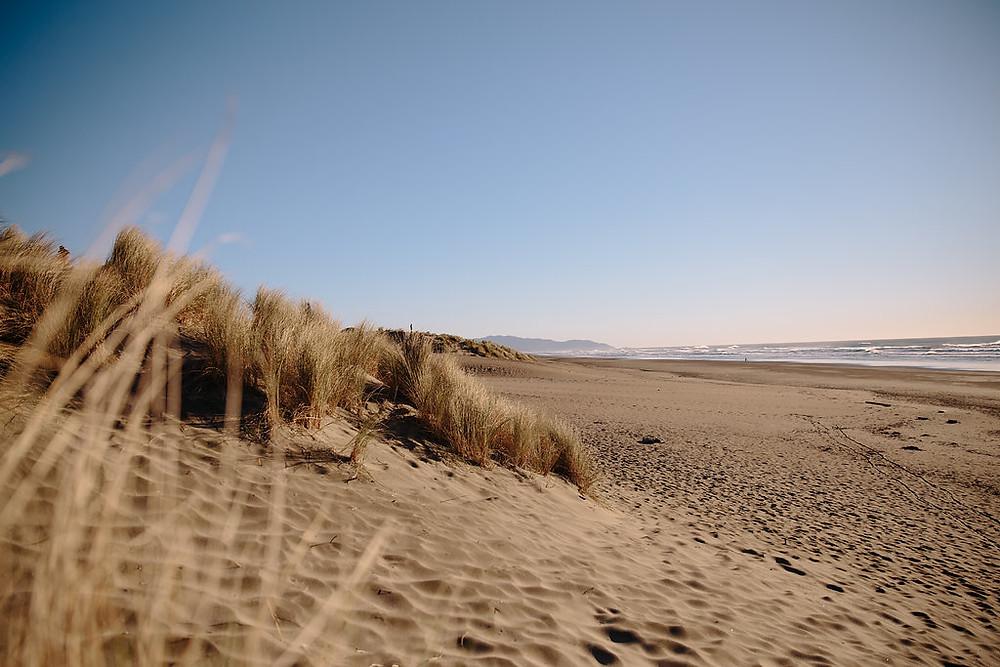 Sand Dunes- Image courtesy of Caliva