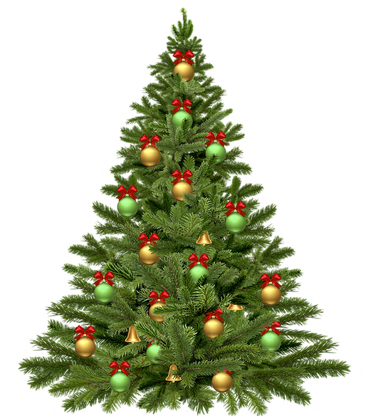 christmas-tree-1808558_1920.png