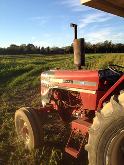 Big red tractor with attitude