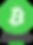 bitcoin cash logo.png