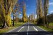 lawrence road (7).jpg