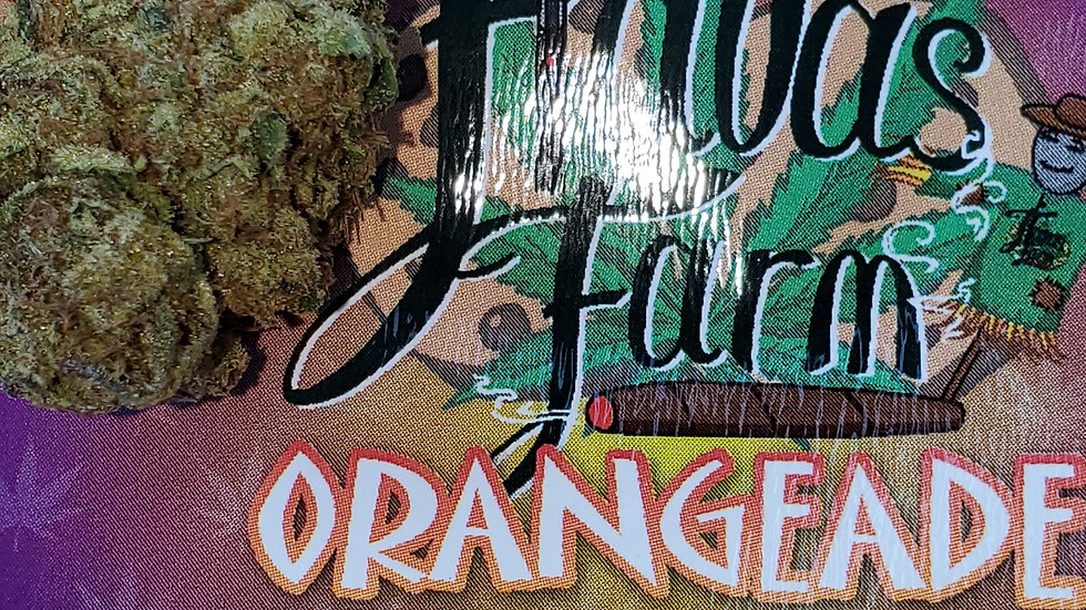 Flavas Orangeade Gram