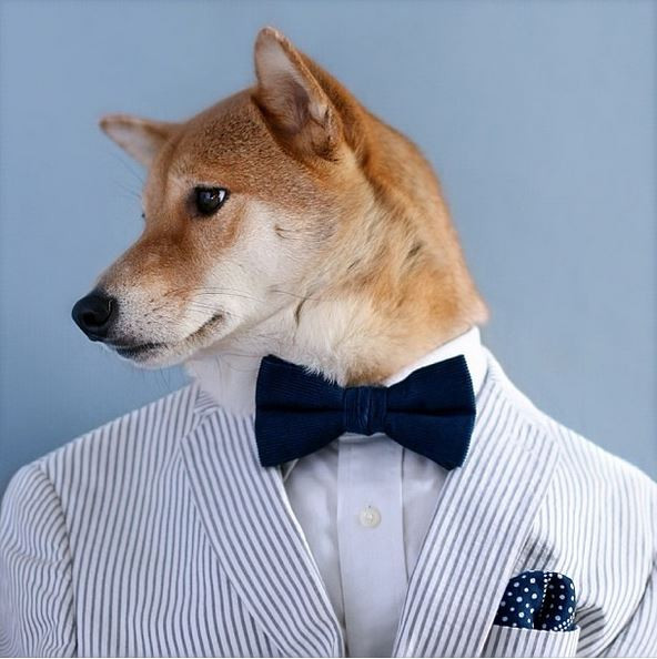 Are you as stylish as this handsome Man?