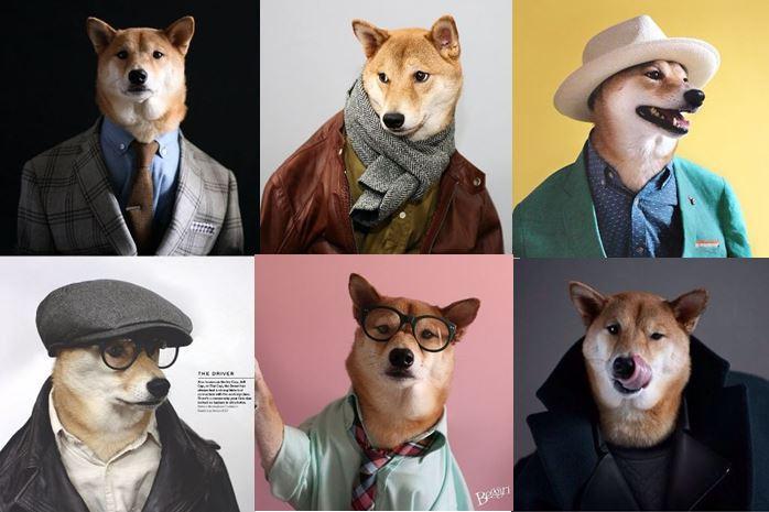 mensweardog group.jpg