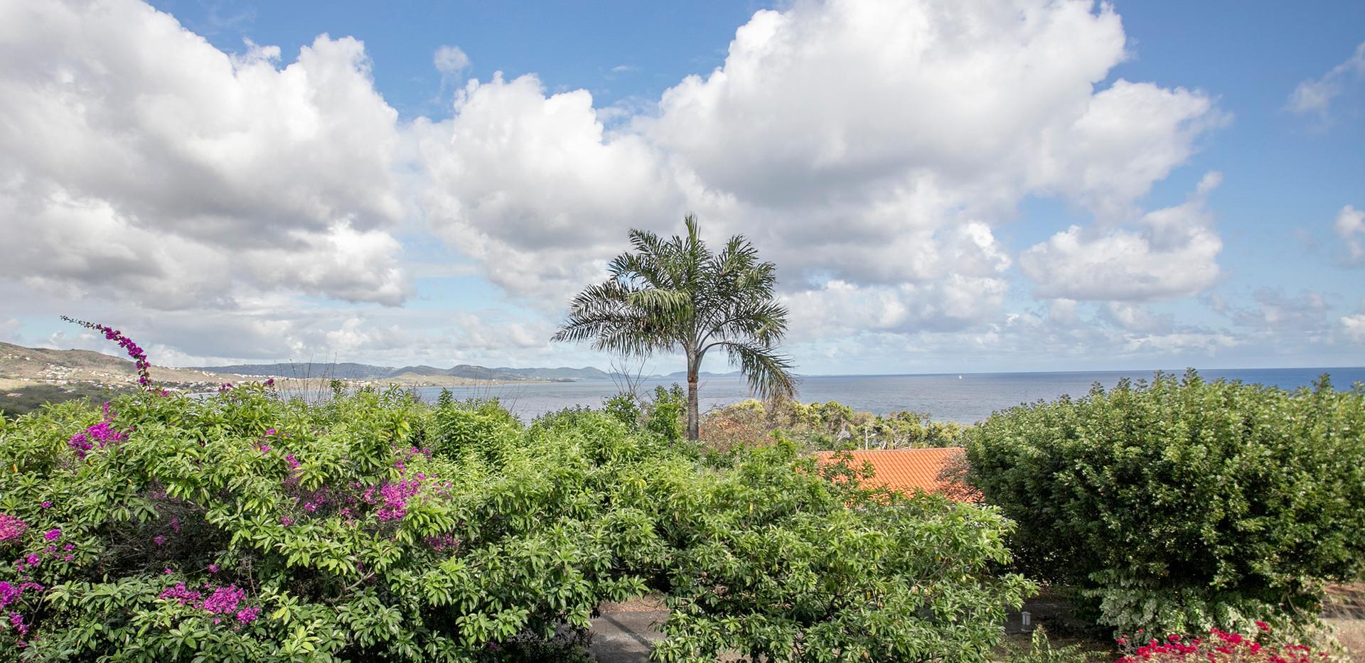 Bungalow - Le Diamant Martinique - LocBir - Les Mahoganys