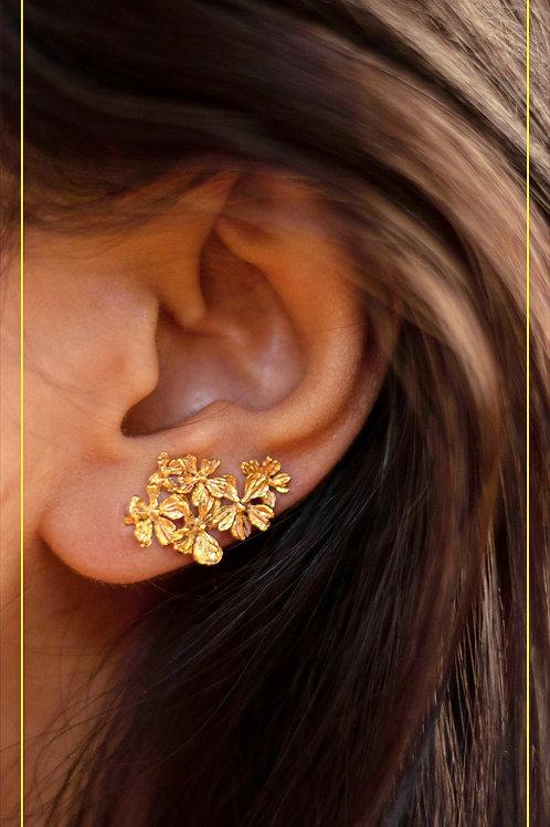 Floral Ear Crawler