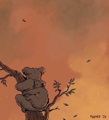 Illustratie koala's, vrij werk