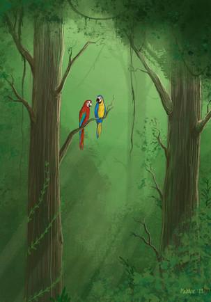 Illustratie papegaaien, vrij werk