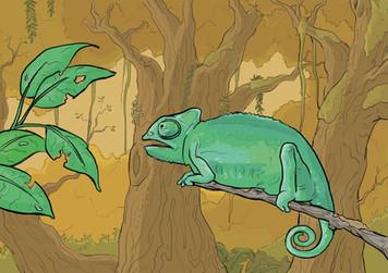 Illustratie kameleon, vrij werk