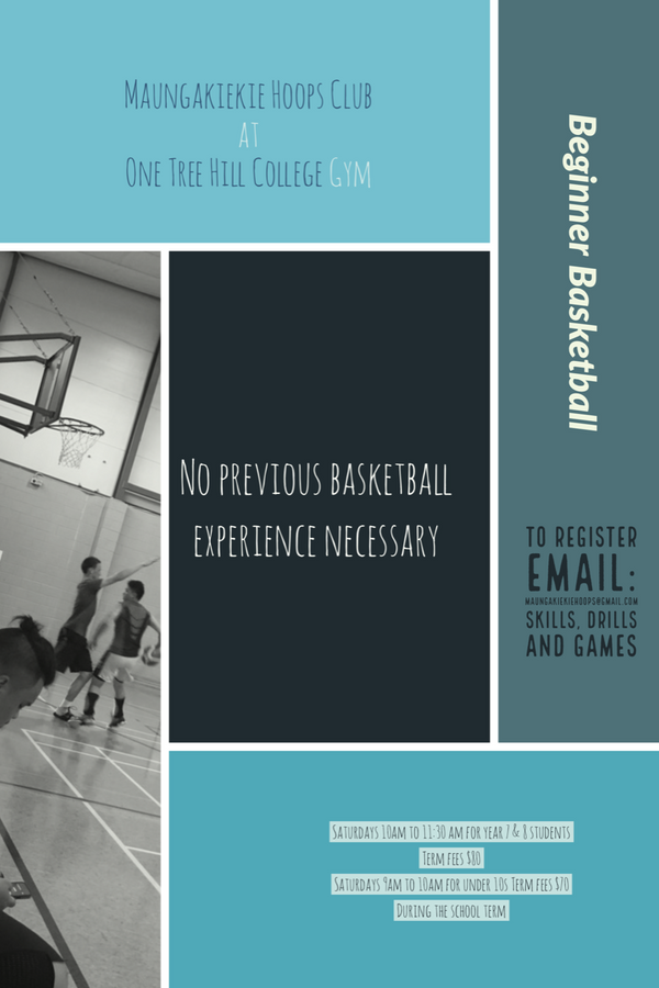 Bball term programme .png