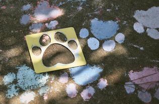 Dog Days of Summer Janet Paszkowski