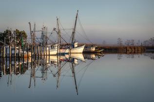 """Scipio Creek Morning"" by Gray Bowlick"