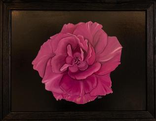"""""""Full Bloom"""" by Gulzar Boghani"""