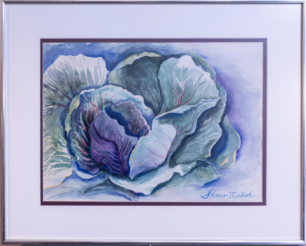 Ornamental Cabbage by Sharon Nicol