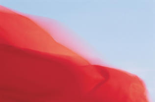 """""""Red Flag at Beach"""" by Bruce Hyer"""