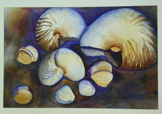"""Sea Shells"" by Sharon Nichol"