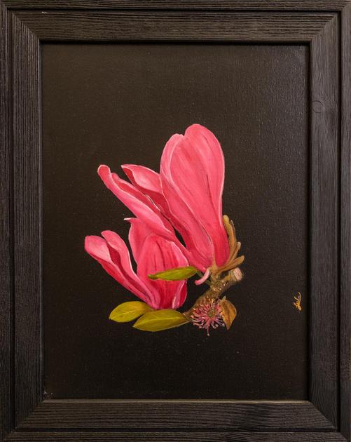 """""""Pink Magnolia"""" by Gulzar Boghani"""