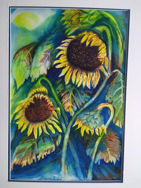 Sunflowers by Sharon Nichol