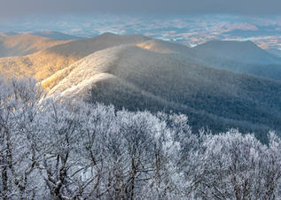 Icy Trees on Top of Brasstown Bald by Brad Burgess