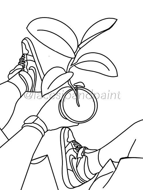 Plant Papi