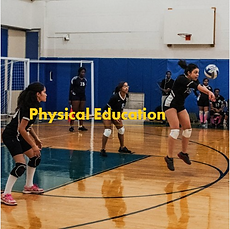Physical Education - Students playing volleyball