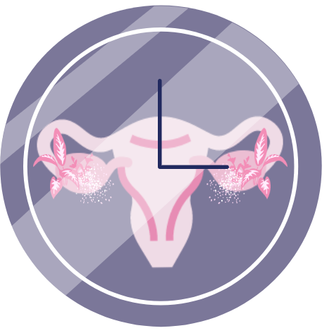 An analogue clock with a uterus in the background, depicting time for menopause is ticking.