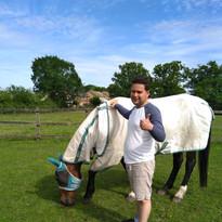ap-rugging-up-horse.jpg