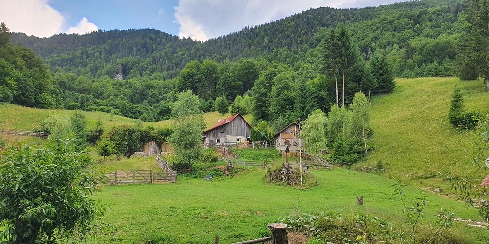 טיול צילום לרומניה