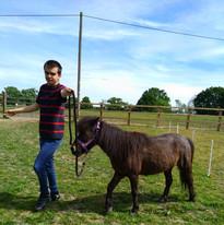 sm-leading-pony.jpg