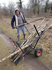 Adult with autism doing volunteer work and lifting logs