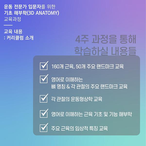 201008 재석님 기초 해부학 세미나-05.png