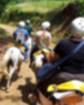 Tachiz Travel Horses