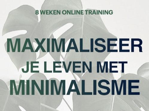 online 8 weken training