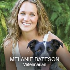 Dr. Melanie Bateson